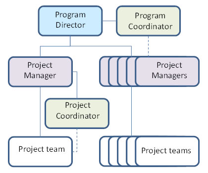 project director project manager